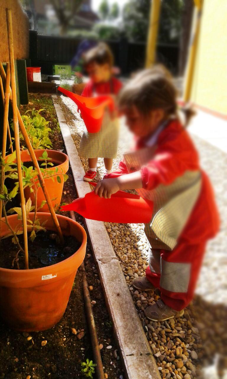 Escuela infantil piquio pozuelo la huerta y el entorno - Escuelas infantiles pozuelo ...
