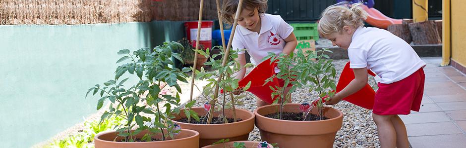 Somos piquio escuela infantil en pozuelo y aravaca - Escuelas infantiles pozuelo ...