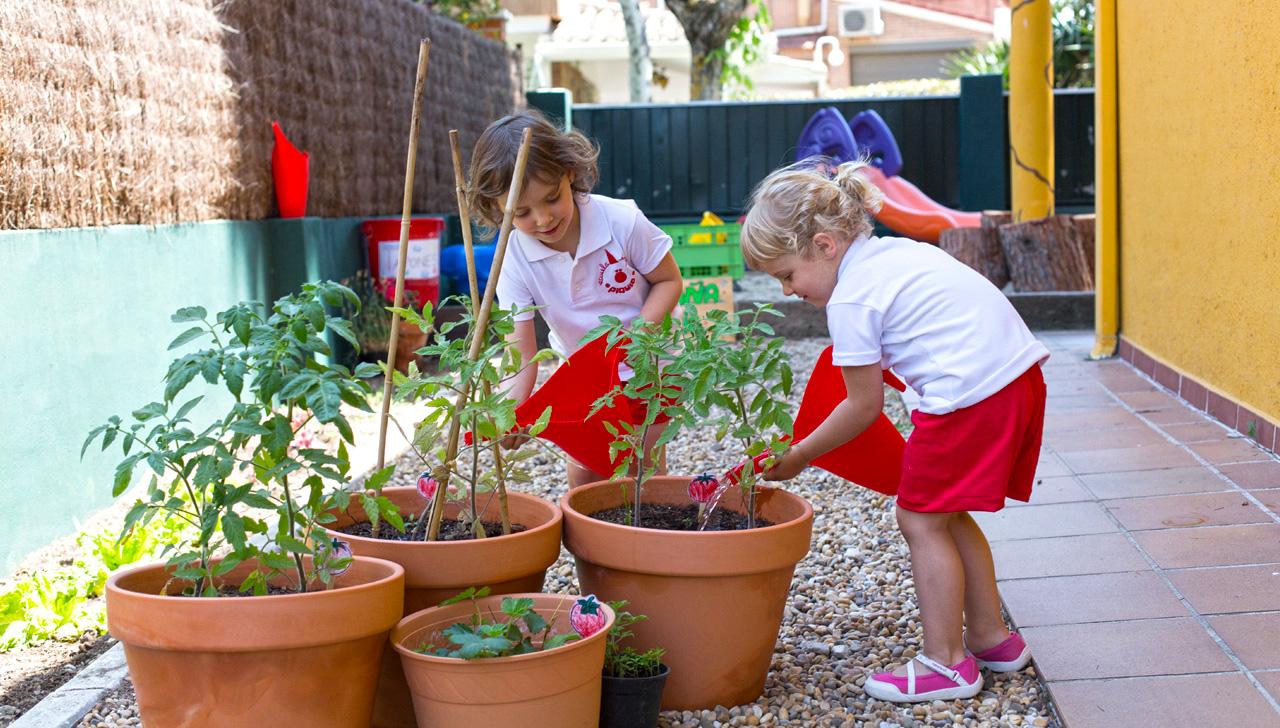 Escuela Infantil Piquio - Huerto EcoEscuela 3